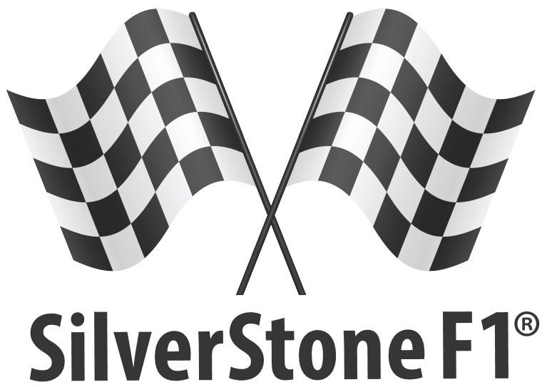 видеорегистраторы Silver Stone